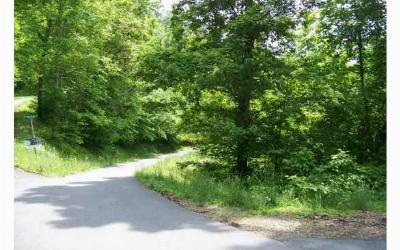 Brasstown Residential Lots & Land For Sale: 14-16 Brasstown Heights