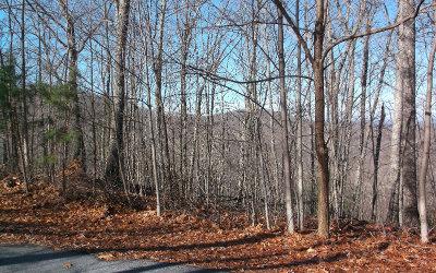 Blairsville Residential Lots & Land For Sale: Lot38 Laurel Brooke