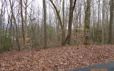 Blairsville Residential Lots & Land For Sale: Lt12 Timber Gate