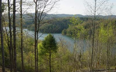 Murphy NC Residential Lots & Land For Sale: $47,000