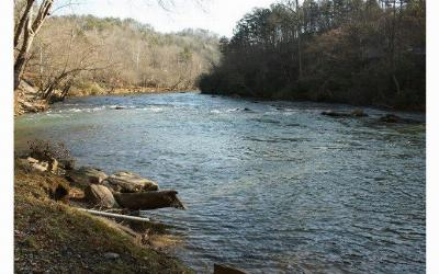 Ellijay Residential Lots & Land For Sale: L2185 River Road