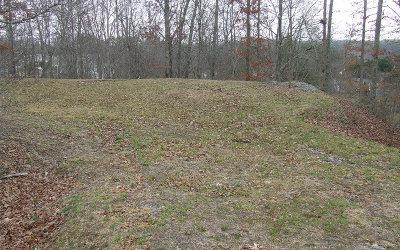 Blue Ridge Residential Lots & Land For Sale: Hunter Lane