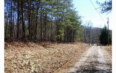 Residential Lots & Land For Sale: Wolf Ridge Lane