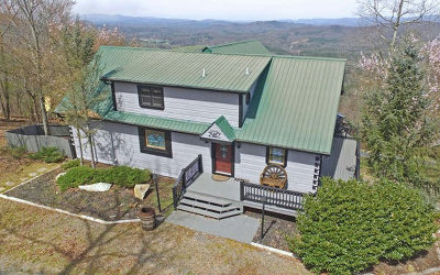Cherokee County Single Family Home For Sale: 44010 Brasstown Heights