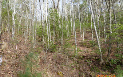 Hiawassee Residential Lots & Land For Sale: Lot 3 Soapstone