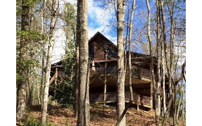 Murphy Single Family Home For Sale: 144 Camp David Road