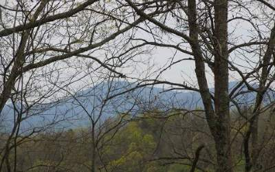 Blairsville Residential Lots & Land For Sale: Tr 1 Burnt Ridge Road