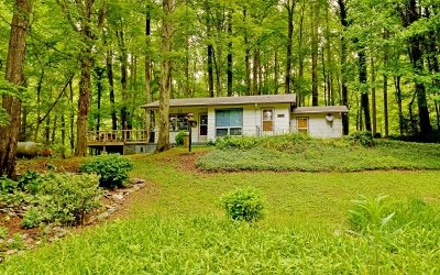 Cherokee County Single Family Home For Sale: 85 Shiloh Place
