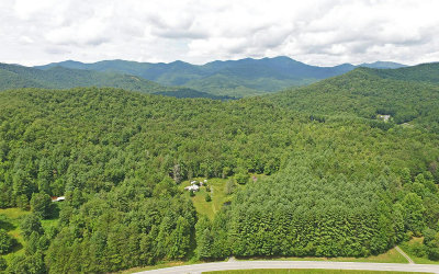 Hiawassee Single Family Home For Sale: 6889 Barefoot Cove