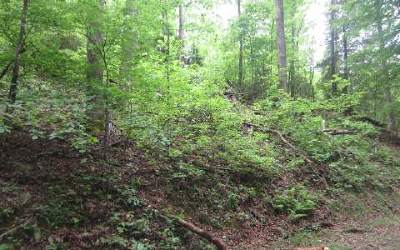 Ellijay Residential Lots & Land For Sale: 947&9 Ezra