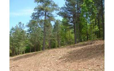 Residential Lots & Land For Sale: Lt 16 Loftis Mountain
