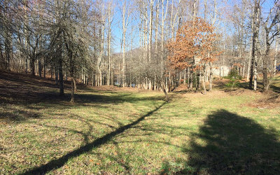 Young Harris Residential Lots & Land For Sale: Tr 1 Holland Dr
