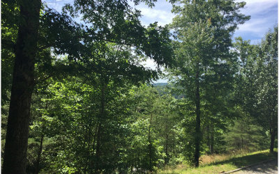 Blairsville Residential Lots & Land For Sale: Lt 16 Trackrock View