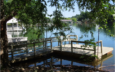 Hiawassee Single Family Home For Sale: 687 Beech Cove Drive