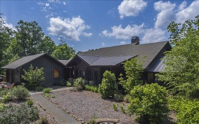 Blairsville Single Family Home For Sale: 436 Wolfstake Road