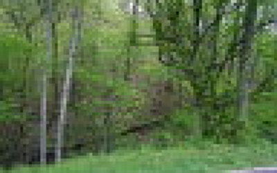 Murphy NC Residential Lots & Land For Sale: $9,900