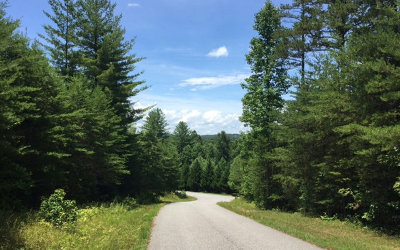 Blairsville Residential Lots & Land For Sale: 40/41 Meadows Of Ivy Log