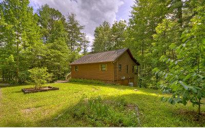 Mineral Bluff Single Family Home For Sale: 179 Deer Trail