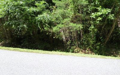 Blairsville Residential Lots & Land For Sale: Lt3 Huntington Ridge