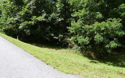 Blairsville Residential Lots & Land For Sale: Lt4 Huntington Ridge