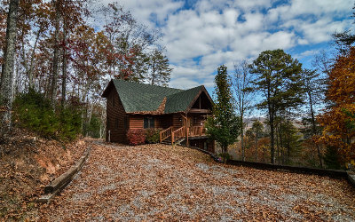 Hayesville Single Family Home For Sale: 72 Bear Cub Path