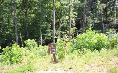 Ellijay Residential Lots & Land For Sale: 202 Stone Cliff Drive