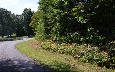 Hiawassee Residential Lots & Land For Sale: Brer Fox Ridge Lot 4