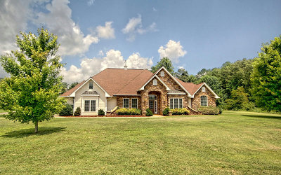 Hiawassee Single Family Home For Sale: 65 Hidden Fields Rd
