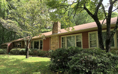 Blairsville Single Family Home For Sale: 341 Gainesville Hwy
