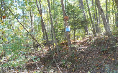 Ellijay Residential Lots & Land For Sale: Bates Road
