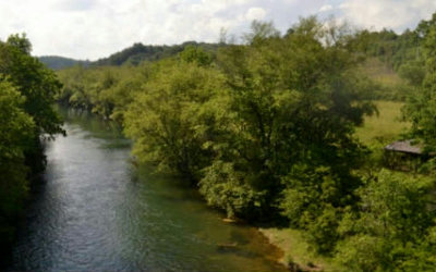 Blue Ridge Residential Lots & Land For Sale: 41acs Toccoa River/Hwy 515