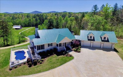 Blairsville Single Family Home For Sale: 1330 Jones Creek Road