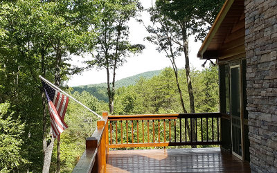 Blue Ridge Single Family Home For Sale: 204 Critter Cove