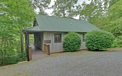 Hiawassee Single Family Home For Sale: 3316 Hf Lyons