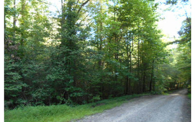 Blairsville Residential Lots & Land For Sale: 9.6ac Cindy Cove Road
