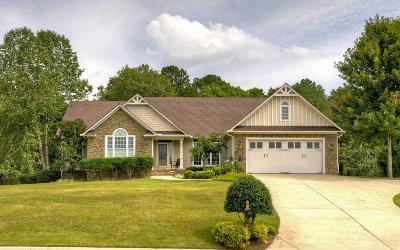 Ellijay Single Family Home For Sale: 100 Oakcrest Drive
