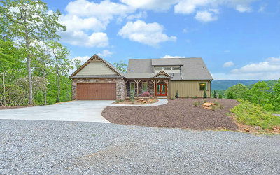 Hiawassee Single Family Home For Sale: 7260 Rocky Mountain Lane
