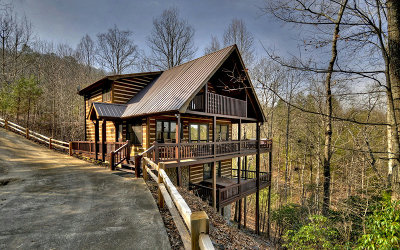 Mineral Bluff Single Family Home For Sale: 376 Rocking Chair Ridge