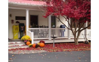 Blairsville GA Commercial For Sale: $255,000