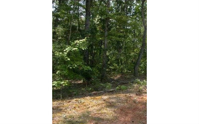 Ellijay Residential Lots & Land For Sale: 16 Morgan Trail