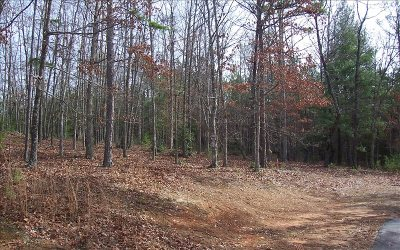 Blairsville GA Residential Lots & Land For Sale: $39,900