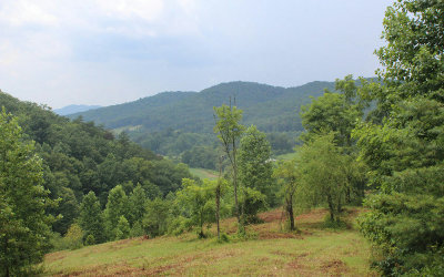 Hayesville Residential Lots & Land For Sale: Downings Creek Road