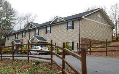 McCaysville Multi Family Home For Sale: 101 1st Street
