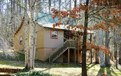 Hayesville Single Family Home For Sale: 161 Skid Strip Lane