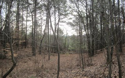 Ellijay Residential Lots & Land For Sale: 258 Simpson Hill Drive