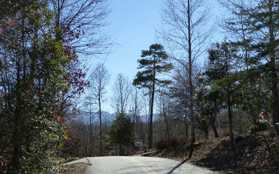 Young Harris Residential Lots & Land For Sale: Lt 9 Woodlake