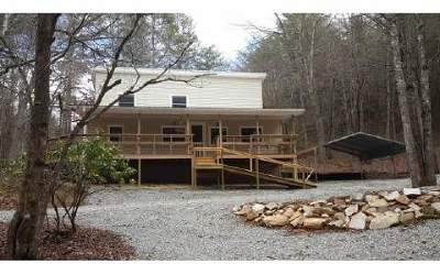 Mineral Bluff Single Family Home For Sale: 5346 Murphy Hwy