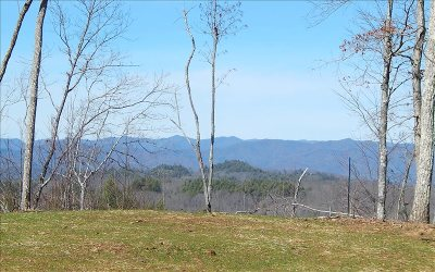 Brasstown Single Family Home For Sale: 397 Windy Knoll Dr