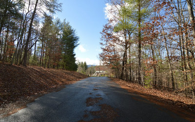 Blairsville Residential Lots & Land For Sale: Lt 26 Coosa Bend