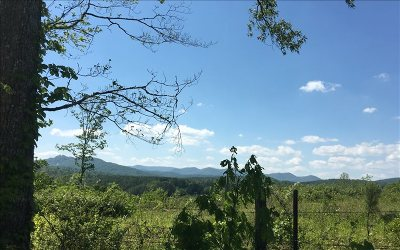 Mineral Bluff Residential Lots & Land For Sale: Old Ridge Road Lot 6